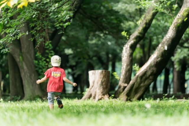 つくばで子育て世代の家を手掛けるベースポイントの公園画像